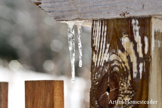 icicles on gate post
