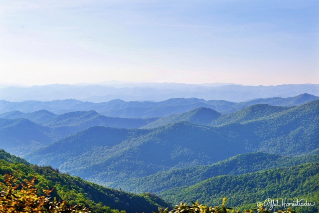 Blue Ridge Mountains - Asheville